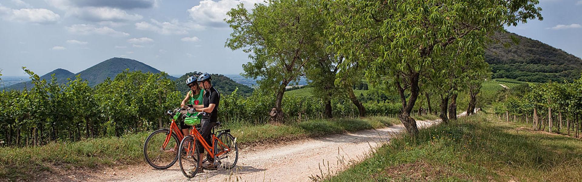 Padova Travel Bike ©M. Danesin
